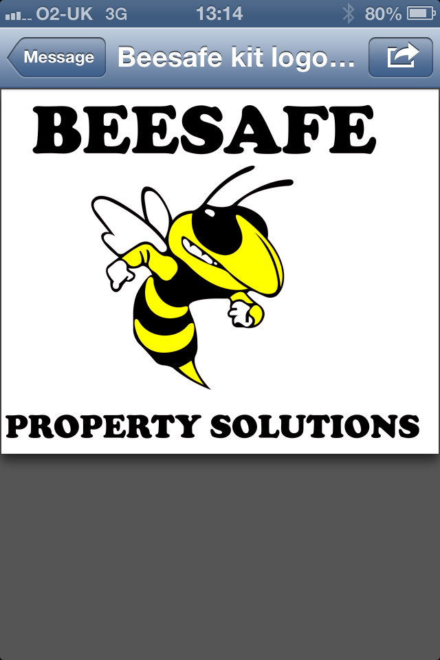 Beesafe Property Solutions 01752 932458
